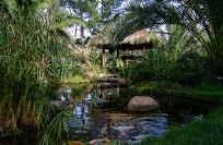 Balinese Teahouse with koi-pond