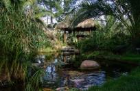 Balinese Teahouse with koi-pond