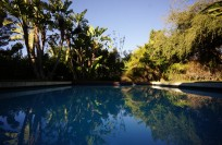20' x 30' Pool w/electric cover and solar heating