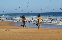 Cuixmala Beach